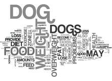是您的狗肥胖文本背景词云彩概念 免版税库存照片