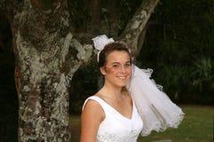 是新娘 库存图片