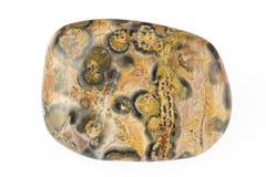 是棕色罐头颜色被找到的绿色碧玉不透明的优美的红色硅土种类黄色 免版税库存图片