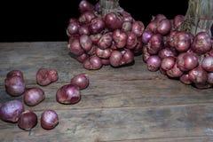 是泰国草本的青葱菜 库存照片