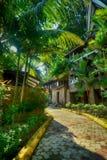 是绿色我们的Planet2巴淡岛印度尼西亚 免版税库存图片