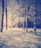 是能设计您例证横向晚上使用的冬天 库存照片