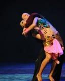 是陶醉印度记忆这奥地利的世界舞蹈 免版税库存照片