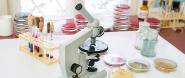 显微镜在实验室 免版税库存图片