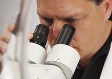 显微镜家 免版税库存照片