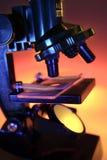 显微镜 库存照片