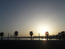 显示一个镇静湖的太阳集合作为太阳在天际的树后掩藏 免版税图库摄影