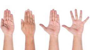 显示五个手指的男性手 免版税库存照片