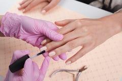 显示五颜六色的指甲油的专业修指甲师检查结束结果 库存照片