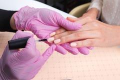 显示五颜六色的指甲油的专业修指甲师检查结束结果 图库摄影
