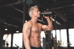 显示他完善的身体的年轻肌肉人 供以人员喝从有蛋白质的鸡尾酒搅拌器 被定调子的图象 图库摄影