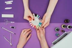 显示修指甲调色板的修指甲师对顾客 库存图片