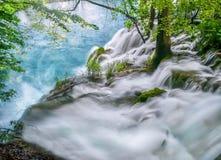 显示冲在水和潮流生存瀑布的上面的水力量和树和植物 免版税库存照片