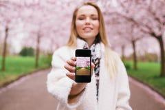 显示在她的手机的春天公园的小姐图片 库存图片