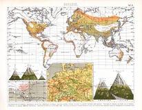 显示地方生物群系的比尔德植物的世界地图 库存照片