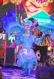 显示威尼斯式狂欢节魔术师魔术师喇曼汤罗宋汤 库存图片