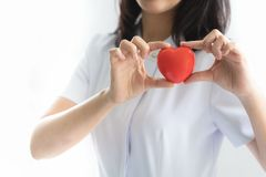 显示心脏模型的护士在医院 库存图片