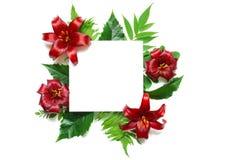 显示您的艺术品的时髦的烙记的大模型 与热带花和叶子的空白的白色贺卡 库存图片