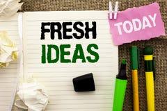 显示新主意的文字笔记 陈列创造性的视觉想法的想象力概念战略的企业照片书面没有 免版税图库摄影