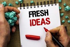 显示新主意的概念性手文字 书面的企业照片文本创造性的视觉想法的想象力概念战略  免版税库存图片