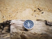 显示方向点的指南针对在低潮期间,洗涤的一棵老树的北部 E 库存照片