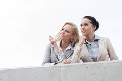 显示某事的低角度观点的愉快的年轻女实业家对同事,当站立在大阳台反对天空时 免版税图库摄影