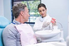 显示牙齿模子的愉快的牙医对人 库存图片