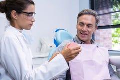 显示牙齿模子的牙医对人 免版税库存图片