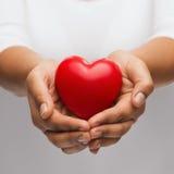 显示红色心脏的妇女杯形手 免版税图库摄影