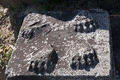 显示缺掉狮子的爪子的雕象柱基在11世纪Preah Vihear寺庙复合体 免版税库存图片