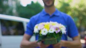 显示花礼物,植物的送货业务,浪漫惊奇的男性传讯者 股票录像