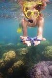显示蓝色海星的Snorkeler 图库摄影