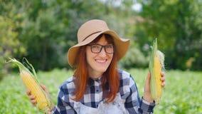 显示被收获的玉米的年轻愉快的女孩在领域 影视素材