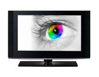 显示颜色眼睛的电视。 免版税库存照片