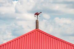 显示风的方向 一只指南针红色公鸡的风标在一个红色屋顶的反对天空 免版税图库摄影