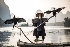 显示鸟的鸬鹚渔夫 库存照片