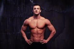 显示他的reliefed身体的男性模型画象 库存图片