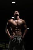显示他训练有素的身体的健身房的人 免版税库存照片
