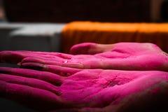 显示colured棕榈的夫人在holi节日期间在印度 免版税库存图片