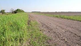 显露国家土路的照相机幻灯片在农村农田旁边 股票视频