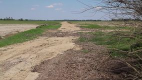 显露国家土路的照相机幻灯片在农村农田旁边 影视素材