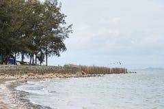 晁老挝人海滩庄他武里,泰国看法  免版税图库摄影