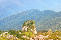 晃动在绿色山谷的石头与森林山风景 免版税库存图片