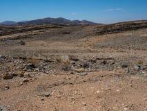 晃动山纳米比亚沙漠干多灰尘的风景地面有分裂的页岩、其他石头和沙漠植物的 免版税库存图片