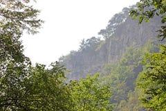 晃动白色 另一个名字是老鹰岩石 克拉斯诺达尔地区 绝对垂直的峭壁,盖用轻的石灰石和 免版税库存图片