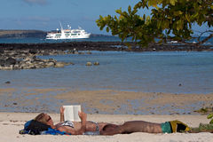晒日光浴在一个海滩的游人在加拉帕戈斯 库存图片