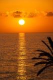 晒日光浴在的美丽的深色的女孩sunbed在海 库存照片