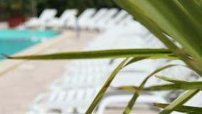 晒日光浴水池休息室 影视素材