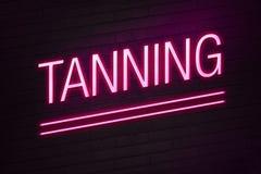 晒黑的客厅霓虹灯广告 向量例证