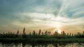 破晓在河在夏天,夏天风景,定期流逝 影视素材